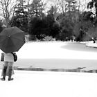 Umbrella By an Icy Pond by wlotus