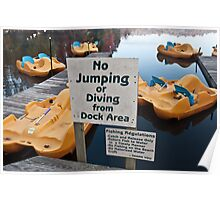 No Jumping or Diving! Poster