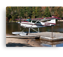 Red and White Plane Canvas Print