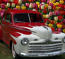 "1946 Ford Custom Sedan ""Tip Toe Through the Tulips"" by TeeMack"