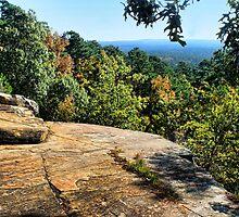 Worth The Climb by Carolyn  Fletcher