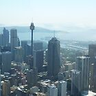 SYDNEY CITY AUSTRALIA by springs