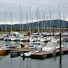 Lough Swilly Marina by Fara