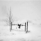 Winter storm in Nevada by DonActon