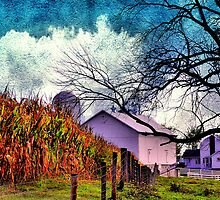 Homestead by Donnie Voelker