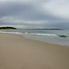 Beach on the Coast of NSW Australia by Sandy1949