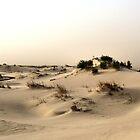 Monahans White Sand Hills ~ Desert Storm ~2 by Carla Jensen