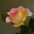 """Green with Pink Rose"" by AlexandraZloto"