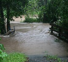 The Rains Are Here: Flooded Driveway by aussiebushstick