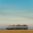 Misty Morning by Yih-Tai  Chen