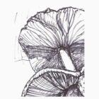 Fungi gills by erincox