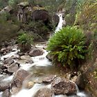Lady Bath Falls. Mt Buffalo National Park. by John Sharp