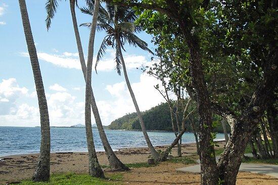 Bingil Bay by STHogan