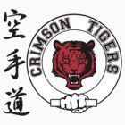 Crimson Tigers Martial Arts by marinasinger