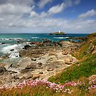 Cornwall: Godrevy Summer II by Angie Latham