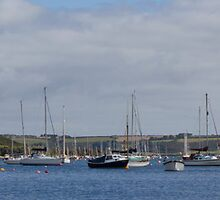 Falmouth Harbour Moorings by Brian Roscorla