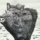Big Javelina by William C Smith