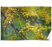 Dreamy Photo . 7 ★★★★★ .  ####  Painting by earlyeau ! autumn  ####.  Norway. 2011. « Arrête-toi, tu es si b»  . Views: 749 . Featured Avant - Garde Art. Poster
