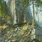 Rock at Websters Falls by Guennadi Kalinine