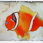 Fish, 2007 - ink on khadi by phoebetodd