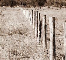 Fence by GumLeaf