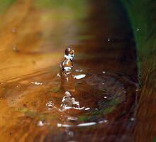 water nymph by Elisabeth Dubois