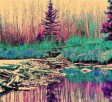 Rainbow Beaver Dam by Luana Juknies