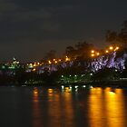 Kangaroo Point Cliffs by Wayne  Nixon