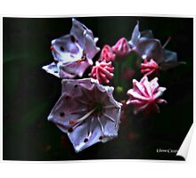 Abstract Mountain Flora Poster