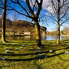 Kilnsey Crag from Kilnsey Park Panorama by Simon Bowen