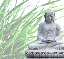 buddha (grass) by hannes cmarits