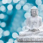 buddha lights (cyan) by hannes cmarits