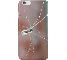 itsby bitsy spider iPhone Case/Skin