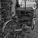 Armenian Street Trishaw by S T