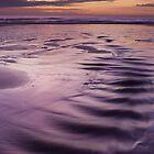 sunrise, forvie sands by codaimages