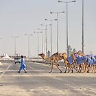 Qatar: Caravan Crossing by Kasia-D