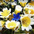 Bouquet for Joanne by Alice Schuerman