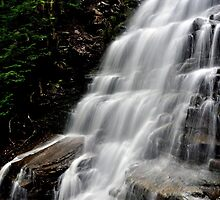 Bear Creek Falls # 1 by Debra Fedchin