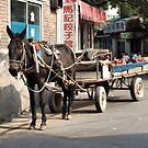 Beijing 2006 - Rural China in the city by Marjolein Katsma
