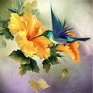 Little Humming Bird by Morag Bates