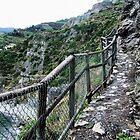 Mediterranean Walk by Robyn Forbes
