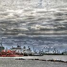 Houston Ship Channel  by venny