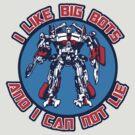 I Like Big Bots by anfa