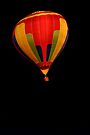 Balloon on Black by Debbie Pinard