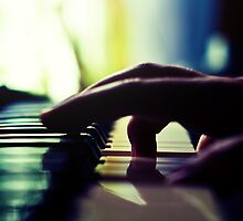 The Pianist's Hand by Tony Buchwald
