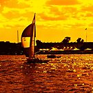 Combustion Heat Map - Sailboat Silhouette - Newport Bay by Jane Neill-Hancock