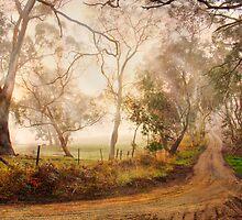 Morning Mist - Monkhouse Rd, Nairne, Adelaide Hills, SA by Mark Richards