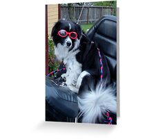 Max in his Goggles Waiting to Go Greeting Card
