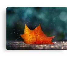 November Shower Canvas Print