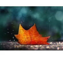November Shower Photographic Print